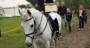 Sărbătoare la Pony Club