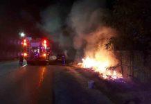 incendii miriste pompieri arad